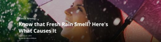 Know that Fresh Rain Smell Here's What Causes It